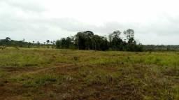 Vende-se 366 hectares na Br 156