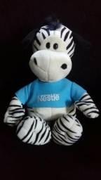 Urso zebra