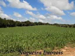 Fazenda 750 alqueires, usada na agricultura (Nogueira Imóveis Rurais)