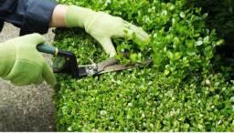 Vaga para colaborador(a) Manutenção , jardim, pintura, limpeza...