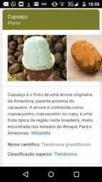 Vendo poupa da fruta cupuaçu cajá e em breve d mais sabores origem do sul da bahia