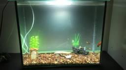 Vendo aquário 62 litros completo