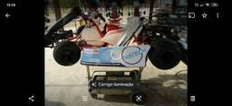 Kart Thunder 2014 motor 2T 125cc ITALSISTEM, usado comprar usado  Paulínia