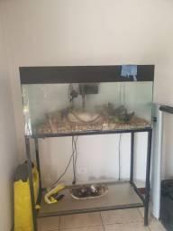 Aquario e suporte