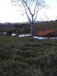 Título do anúncio: 5 alqueires todo formado/ 8 km da cidade de vale do anari