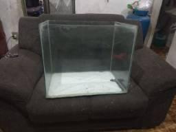 Título do anúncio: Aquário grande com suporte e tampa de vidro