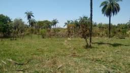 Fazenda de 40 Hectares em Biquinhas - MG (Oportunidade)