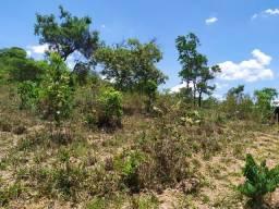 Terreno Rural fazenda 2 há, financiamento próprio - Matozinhos