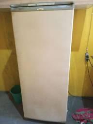 Frezezr vertical  Consul 220v
