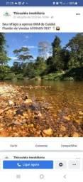 Título do anúncio: Vendo terreno no coxipo do Ouro a 6 km de Cuiabá