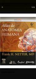 Livro anatomia Netter 6 ed