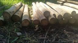 Título do anúncio: Vende madeira eucalipto tratado para serca