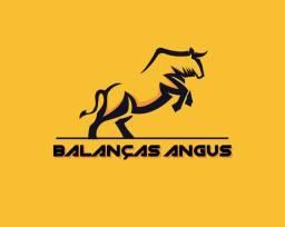 Balanças Angus Vende balança rodoviária