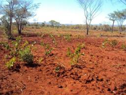 Terreno de 158 hectares em Joaquim Felício/MG