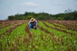 Título do anúncio: Realize seu sonho em adquirir um imóvel rural