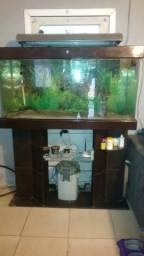 Aquario 400 litros com movel