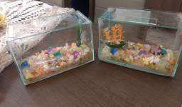 Vendo dois aquários