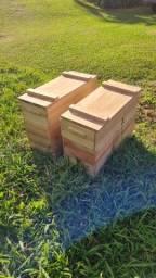 Título do anúncio: Caixa de criação de abelha. Apicultura.