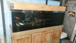 Aquario  600 litros