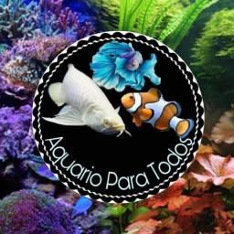 Loja de Aquarios
