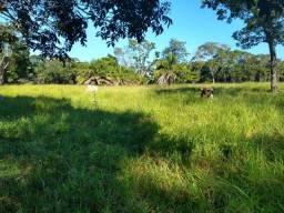 Fazenda próximo a cidade de Piracajuba