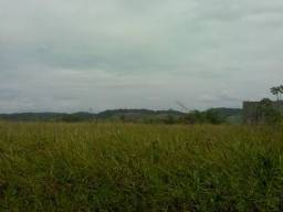 Terreno para galpão BR-101 Areá industrial