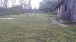 Fazenda de 2804, 68 hectares em Manicoré no Amazonas toda em dia