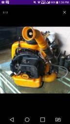 Motor Guarany 1.300$ 11-litros
