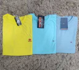 Camisas básicas - do (p) ao (GG)