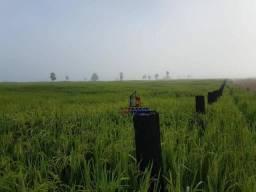 Fazenda Localizada no Guatá
