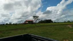 Fazenda Rancho Grande -Carolina-Maranhão