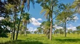 Zona Rural, Formosa-GO, própria para pecuária, 36 alqueires
