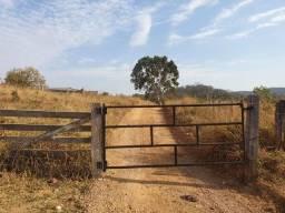 Título do anúncio: Fazenda | Ac. Permutas entrada | 120 Alqueires | 125km Goiânia