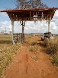 Vendo Fazenda no Município de Leopoldo de Bulhões