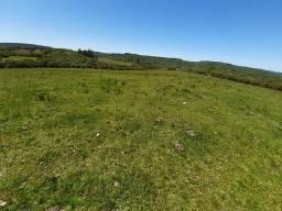 Arrendo 125 hectares soja
