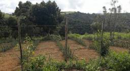 Sitio a 15 km de uniao dos Palmares