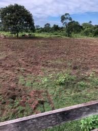 Fazenda em Rosário Oeste 1.460 hectares á venda