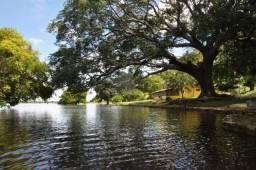 Terreno Pantanal Matogrossense
