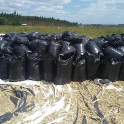 Título do anúncio: Silagem de milho,30kg,22,00 reais o saco *