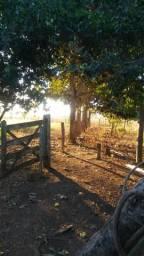 Sitio a 30km de so 15km de terra campo verde