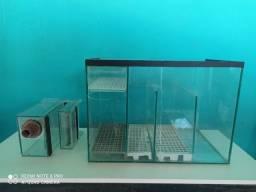 Sump aquario + Overflow Box