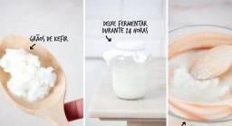Kefir de leite e de água, kombucha,  ótimo para sua imunidade!