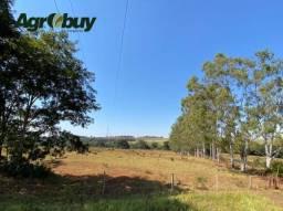 Título do anúncio: Fazenda em Quirinópolis - go