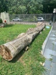 CPAC: corte e poda de árvores conciente.