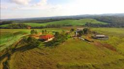 Grande Área para Soja próxima de Curitiba