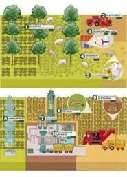 Propriedade rural de pequeno porte