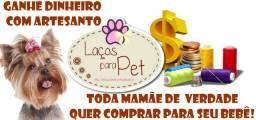 Curso de Acessórios Pets