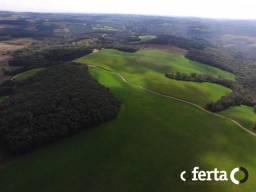 Fazenda na Lapa cod:539