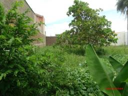 terreno jardim ipanema - Araçatuba