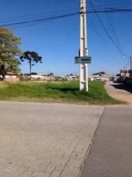 Terreno à venda em Guatupê, São josé dos pinhais cod:TE00096